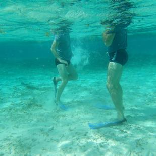 Segeltoenr in Karibik, sehr sehenswert ueber und unter Wasser