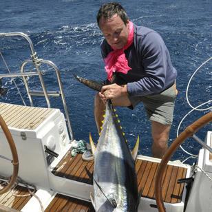 Thuna bei segeln und fischen in Kapverde gefangen