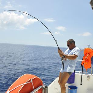 mitsegeln, segeln und fischen