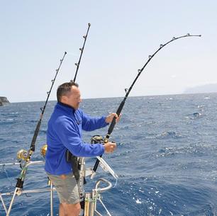 segeln und fischen, mitsegeln