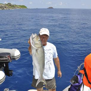 mitsegeln und fischen