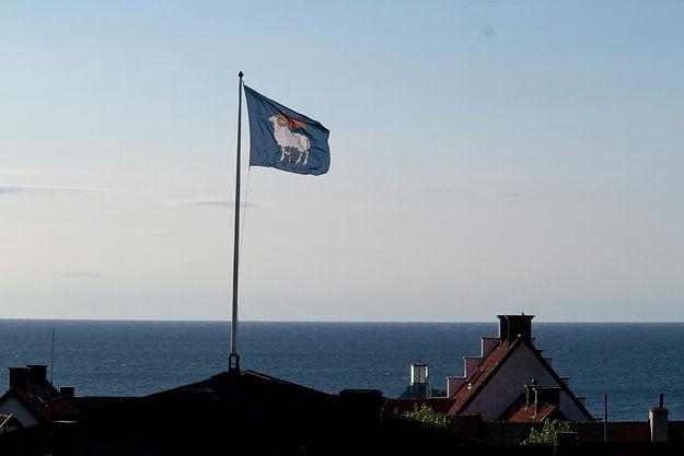 Guteflaget, Gotlands flag_