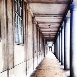 Instagram - Neo Classic Copenhagen