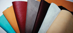 cow leather supplier - tannery colombian leather