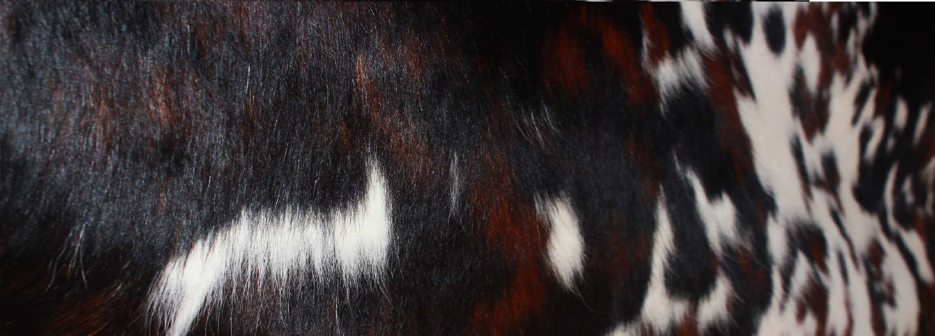 cowhide, cow leather supplier, tanne