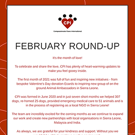 February newsletter.png