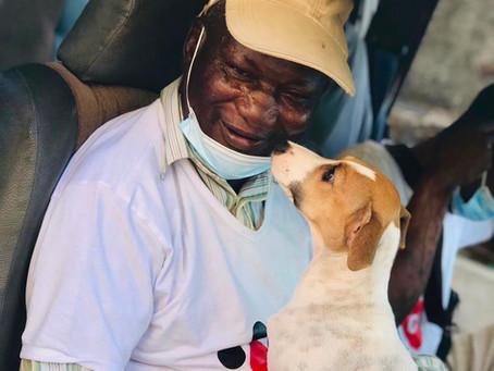 World Veterinary Day: Meet Dr Bangura, Our Resident Vet