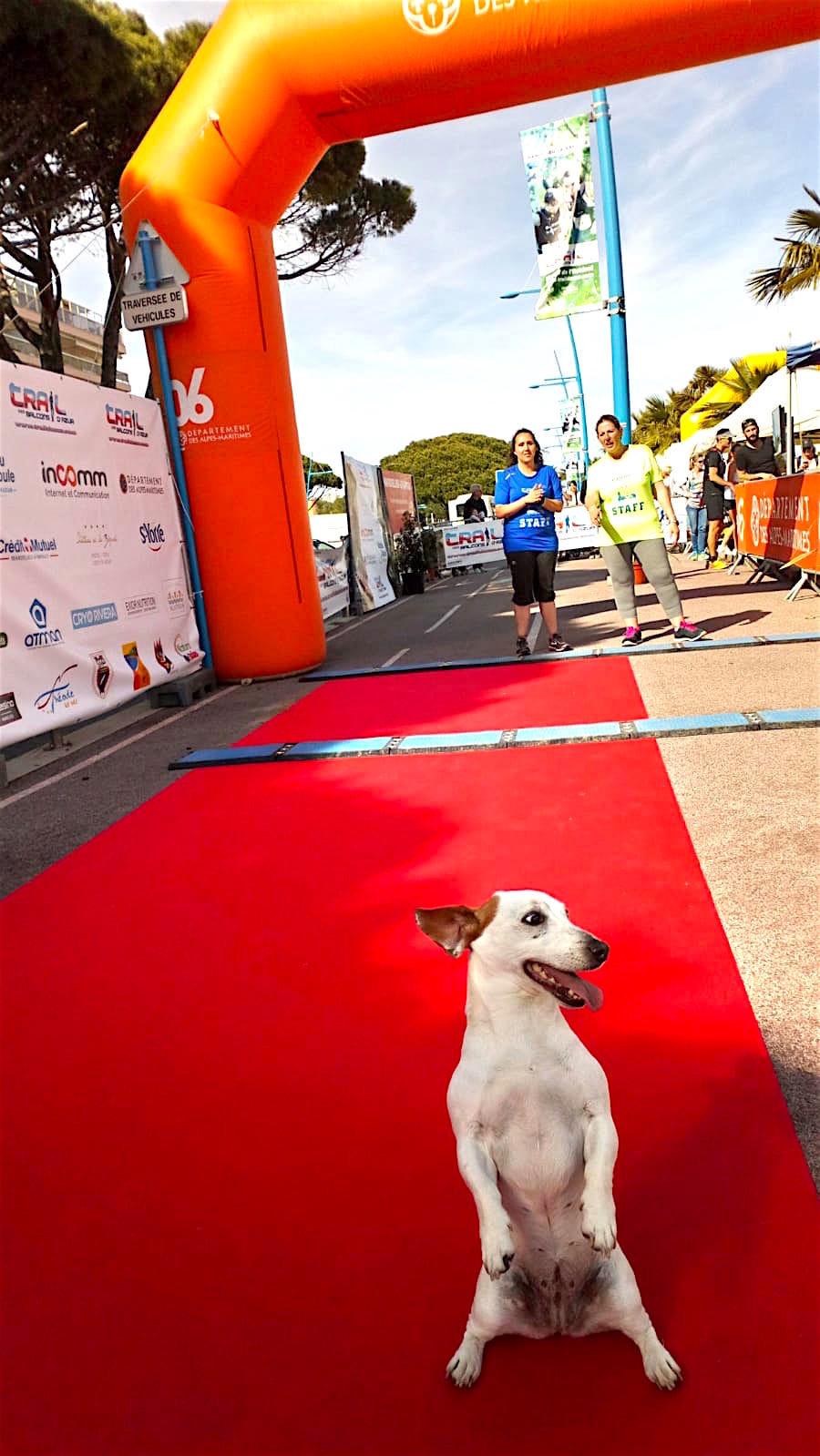 Maraton trail cannes 2019.jpg