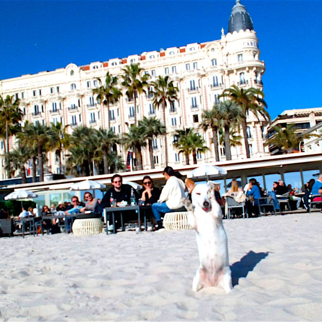 French Starlette at the Hotel Ritz Carlton Cannes