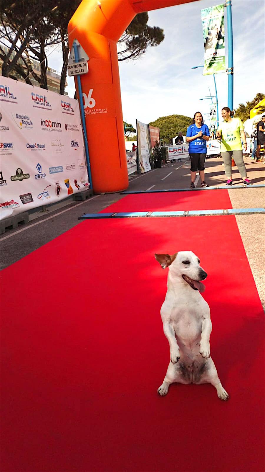 Maraton Cannes Trail 2019