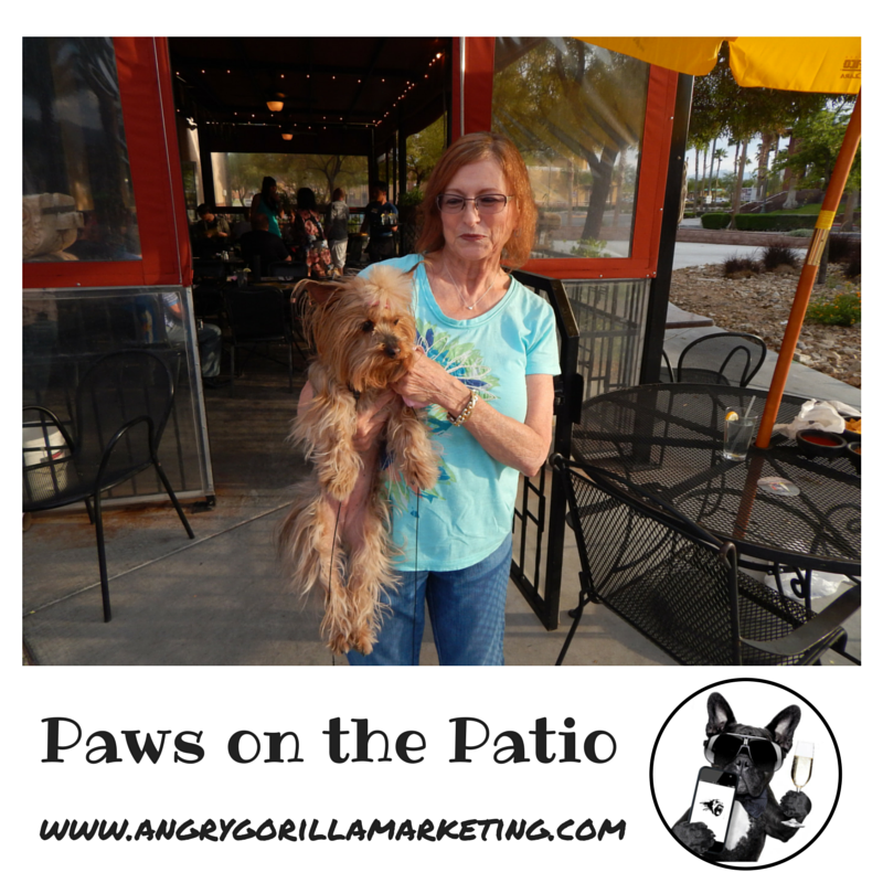 Paws on the Patio Event 3.png