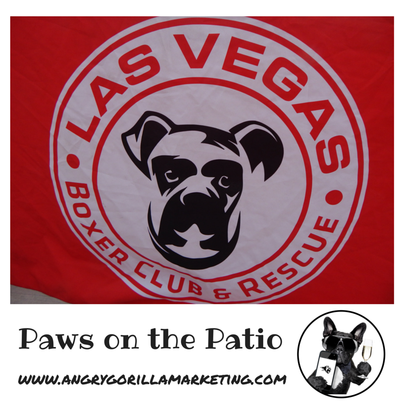 Paws on the Patio Event 13.png