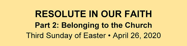 Website Banner - Easter 3 Homily.jpg