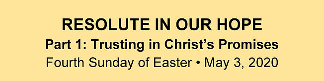 Website Banner - Easter 4 Homily.jpg