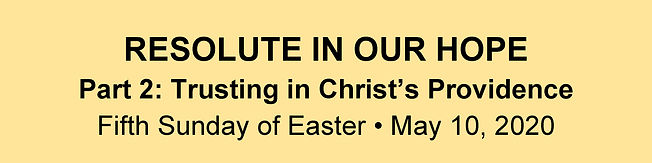 Website Banner - Easter 5 Homily.jpg