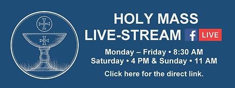 Website Banner - Holy Mass Livestream light blue.jpg