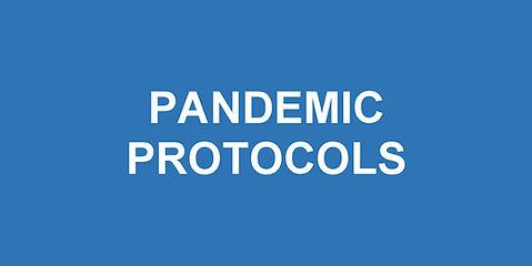 Website - pandemic.jpg