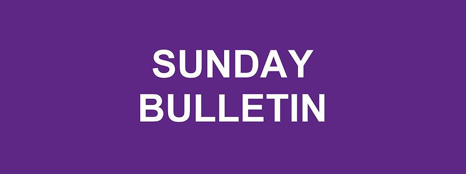 Website Banner - Advent Sunday Bulletin.