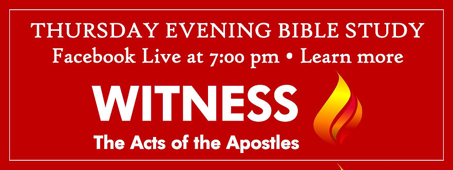 Website Banner - PM Bible Study Witness