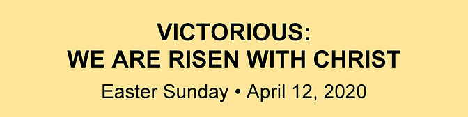 Website Banner - Easter Homily.jpg