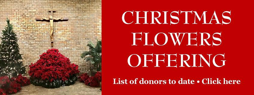 Website Banner - Christmas Flowers.jpg