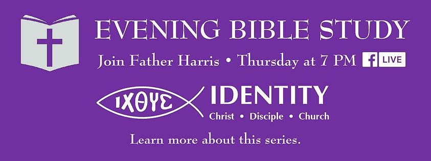 Website Banner - Lent Bible Study Identi