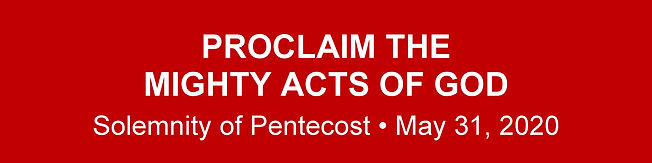 Website Banner - Pentecost Homily.jpg