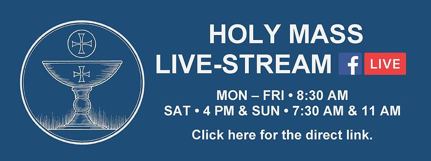 Website Banner - Holy Mass Livestream bl