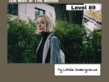 Old Man of The Woods | My Little Underground Level 89