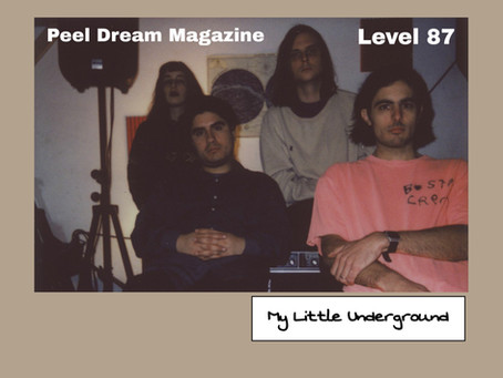 Peel Dream Magazine | My Little Underground Level 87