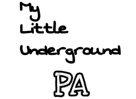 Support My Little Underground!