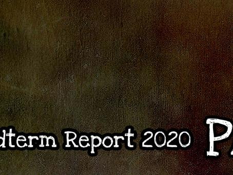Midterm Report 2020