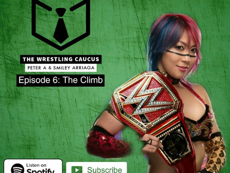 The Wrestling Caucus Recaps WWE Money In The Bank!