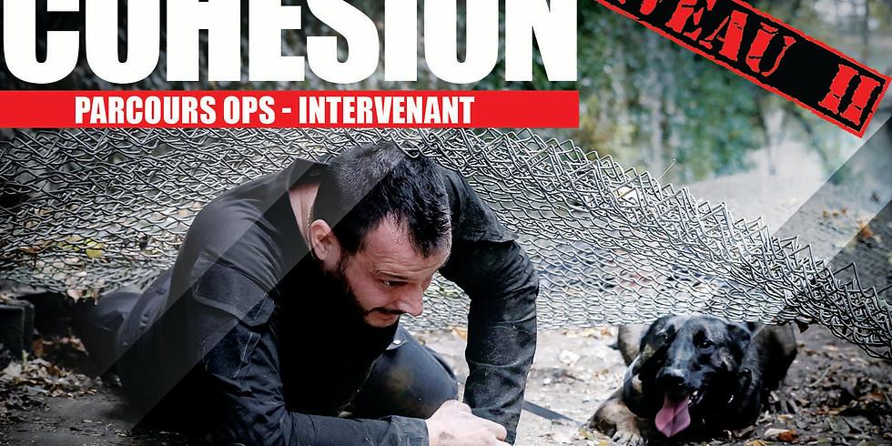Journée  Working dog Cohésion Niveau 2