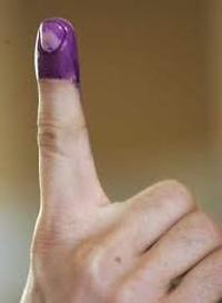 purplefinger.png