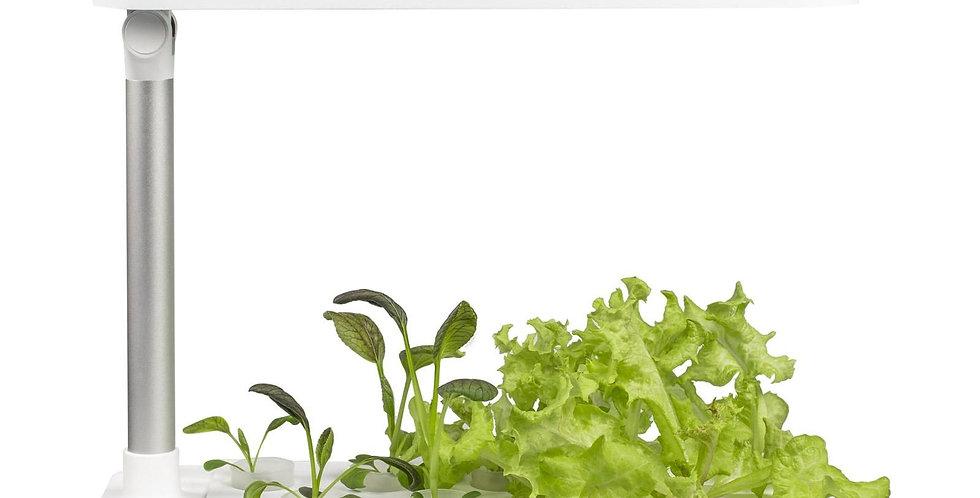 Vegebox ™ by BioChef - Grădină de masă