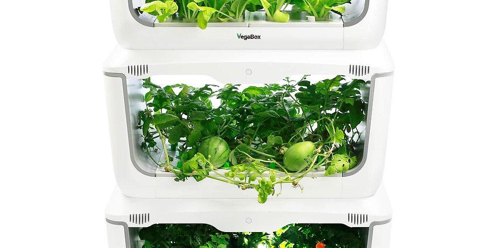 Vegebox ™ by BioChef - Grădină de casă