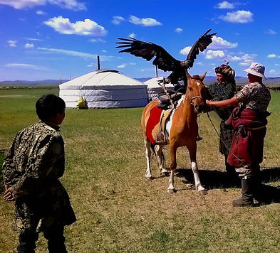Mongolia fixer, fixer in Mongolia, animal handling, eagle hunter, horse training, ger, location services, herder, deel