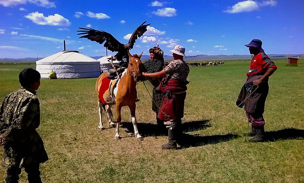 Eagle horse training.jpg