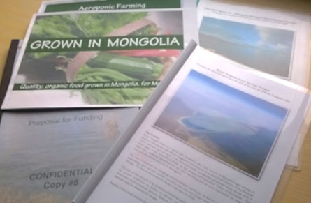 Mongoli fixer, fixers in Mongolia, feasibility study, report, project proposal, budget, project management