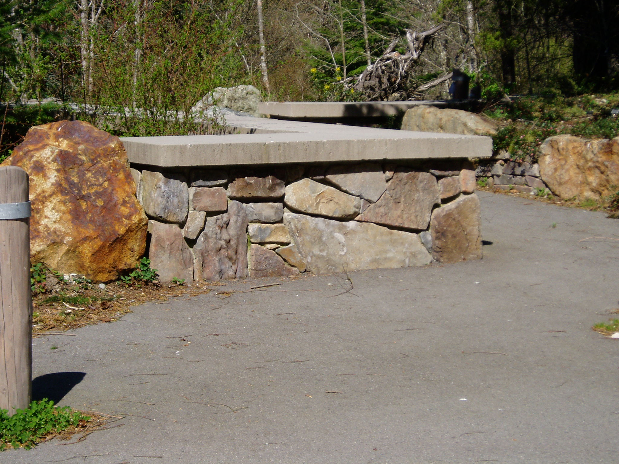 Seattle stone 070