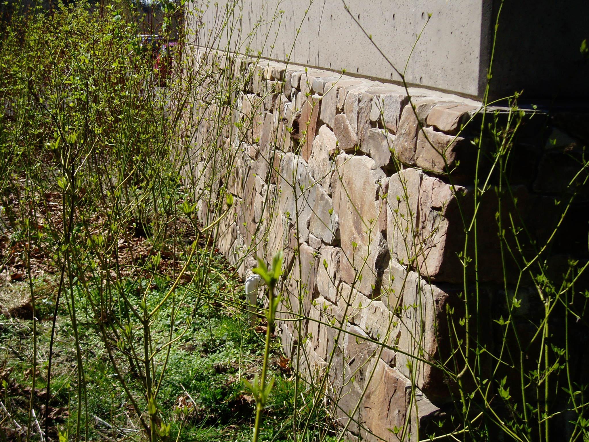 Seattle stone 064