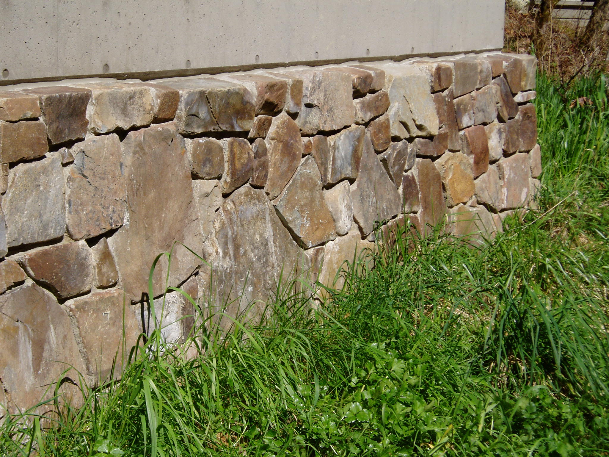 Seattle stone 065
