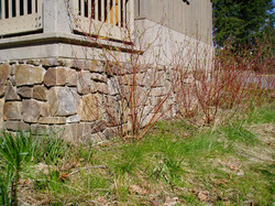 Seattle stone 066