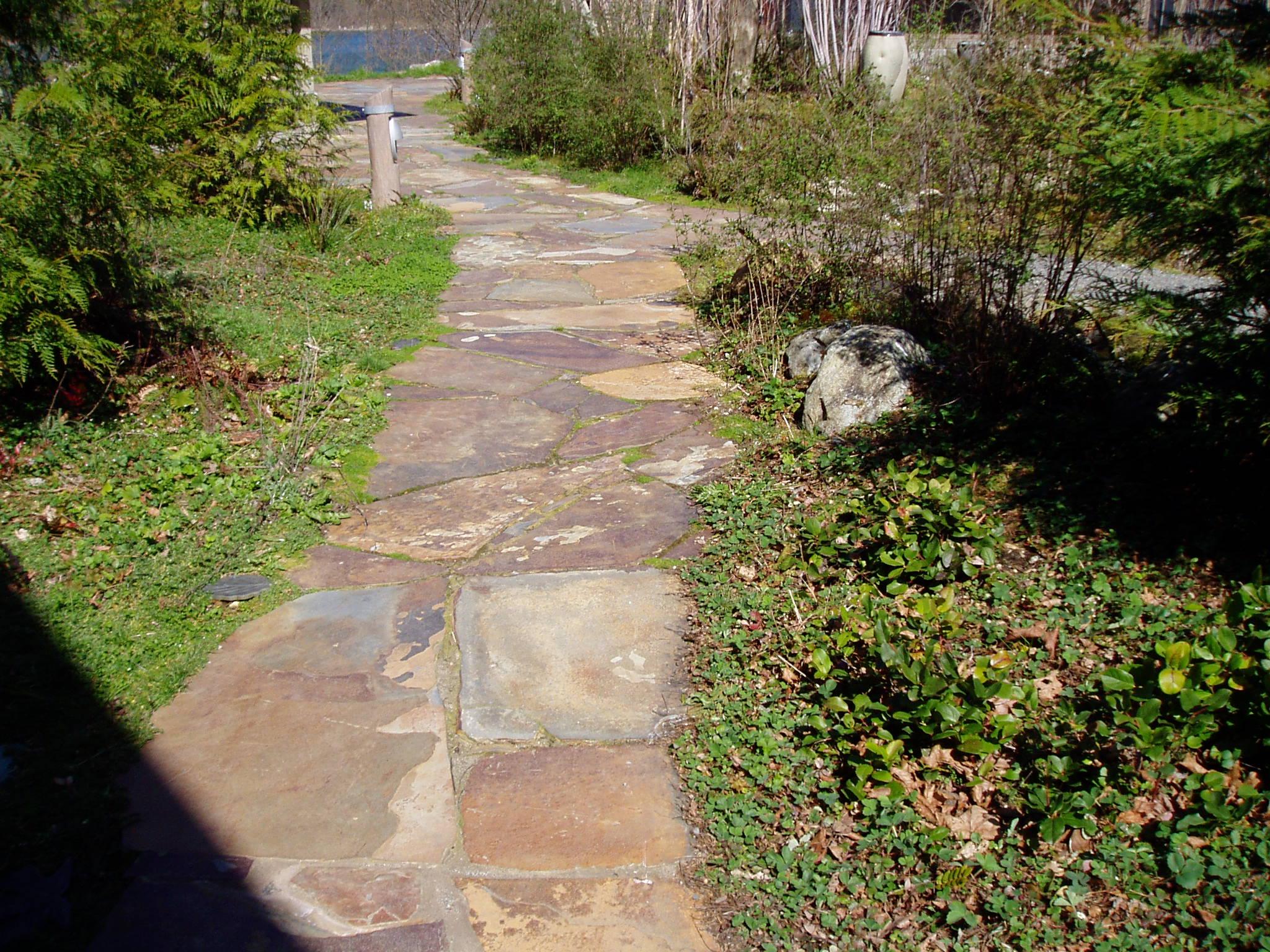 Seattle stone 085