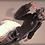 Thumbnail: [AO] Wild Lynx (Collaboration Set)