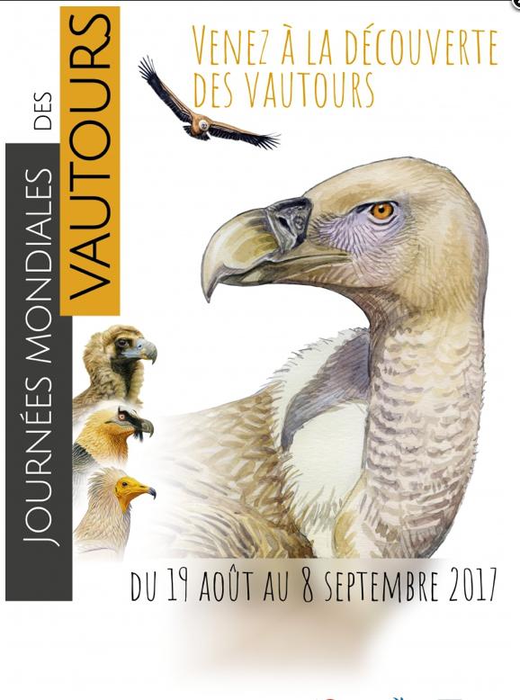 Journées 2017_vautours_2017.png