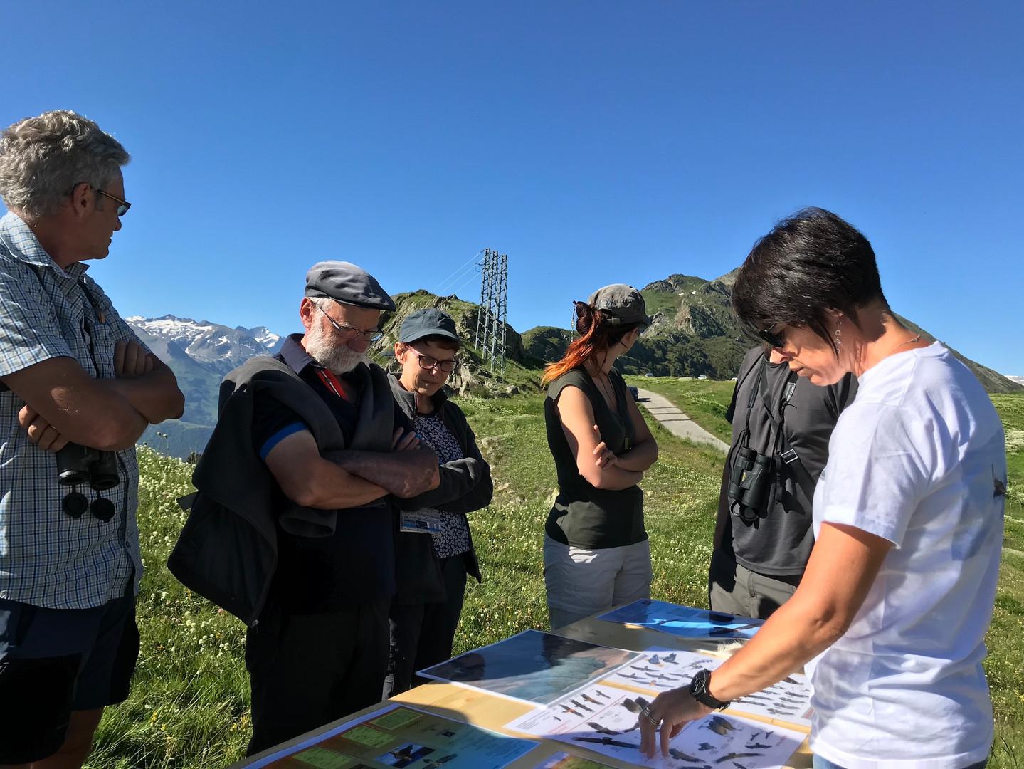 Ecrins de nature 2018 Oisans-27.JPG