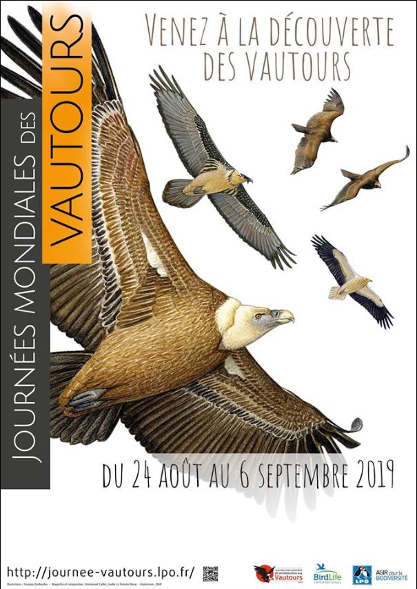 Journées mondiales des vautours 2019.png