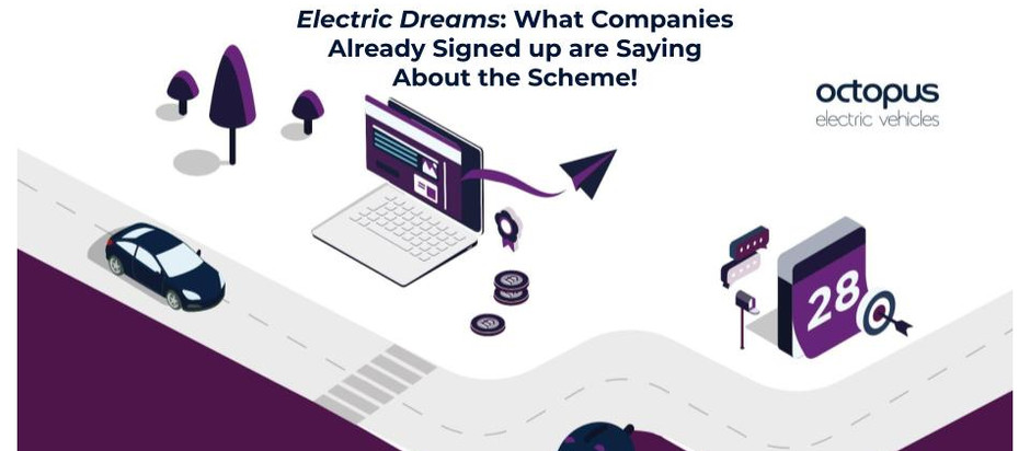 Electric Dreams: What Companies Already Signed up are Saying About the Scheme!